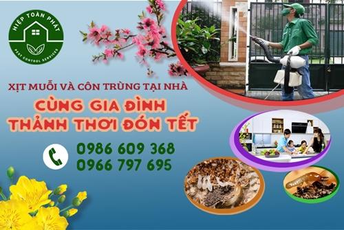 Phun diệt muỗi và côn trùng - dọn nhà đón Tết