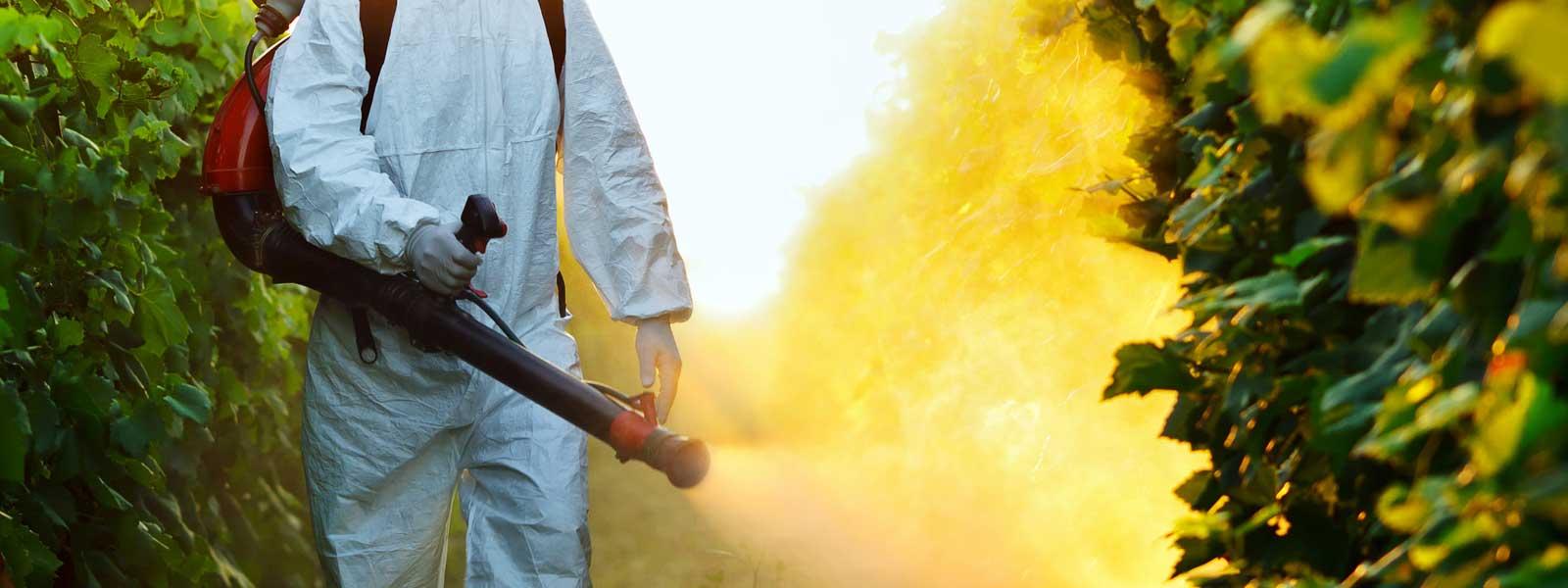 Diệt Muỗi Hiệp Toàn Phát